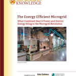 The Energy Efficient CHP Microgrid