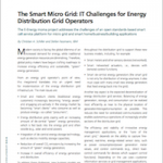 IT Challenges for the Smart Microgrid